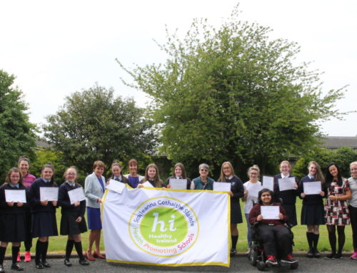 Our HSE Healthy Ireland-Health Promoting Schools Flag was officially received