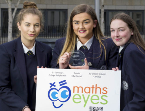 Maths Eyes Project 2019